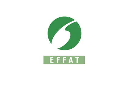 EFFAT-BIG